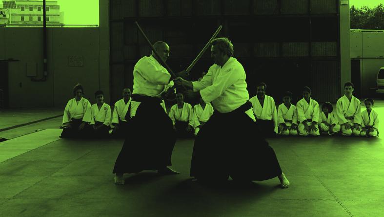 aikidoGreen