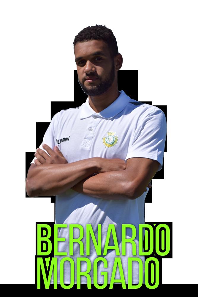 Bernardo-Morgado